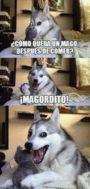 Mago Gordito