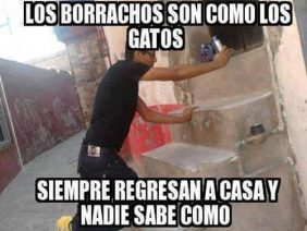Borrachos y Gatos