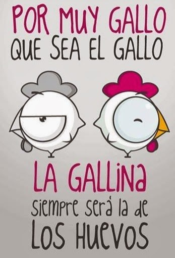 Por muy Gallo que sea el Gallo…..