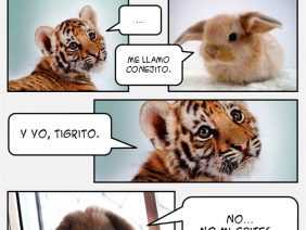 Conejito y Tigrito