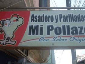 Mi Pollazo