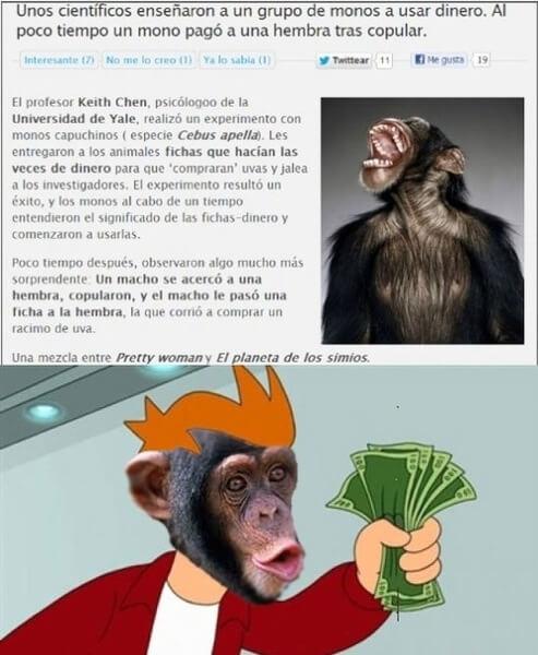 Monos Puteros