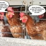 Huevos Gordos