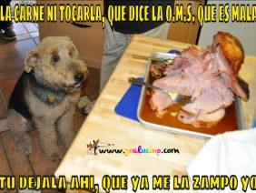 La Carne Ni Tocarla