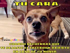 Facebook Abierto
