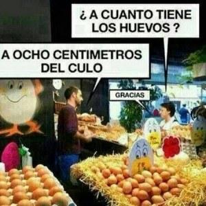 ¿A Cuánto los Huevos?