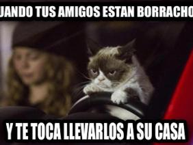Amigos Borrachos