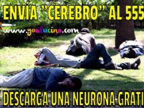 Neurona Gratis