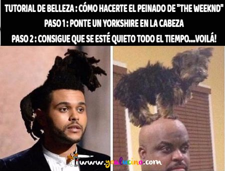 peinado de the weeknd