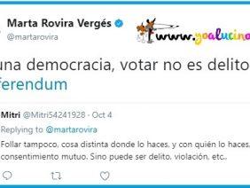 Votar No Es Delito