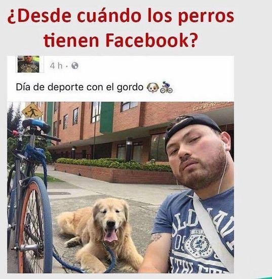 ¿Desde Cuándo los Perros Tienen Facebook?
