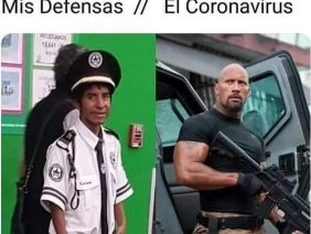 Mis Defensas Vs Coronavirus