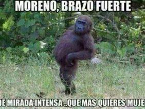 Moreno de Brazo Fuerte